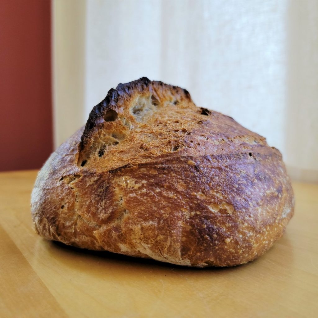 You are currently viewing Bolted All Purpose Flour Sourdough Bread