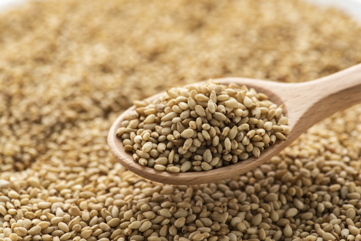 'Brands want a broader toolbox of components': Equinom establishes 'first-of-its-kind' high-protein sesame seed to change 'future of plant-based foods'