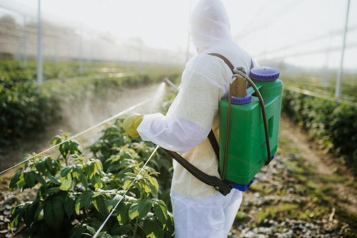 Glyphosate discussion strengthens as new evaluation ends herbicide 'is not carcinogenic'