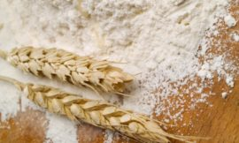 Starch Europe tables discouragement on anti-dumping duties for wheat gluten exports to Canada