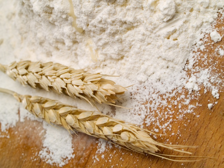 You are currently viewing Starch Europe tables discouragement on anti-dumping duties for wheat gluten exports to Canada