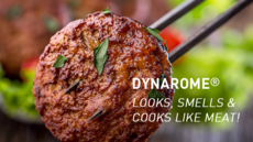New Plant-Based Meat Analogue Technology